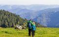 ferienland-schwarzwald-freizeit-tourismus-15